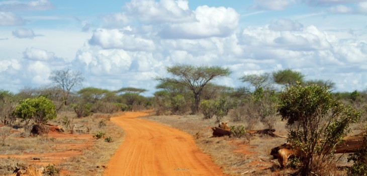 Red roads of Tsavo East #1
