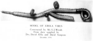 Ebola_EM_image002