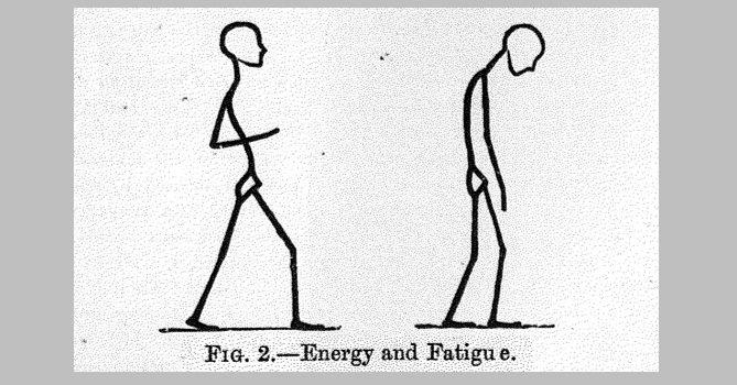 Energy and fatigue