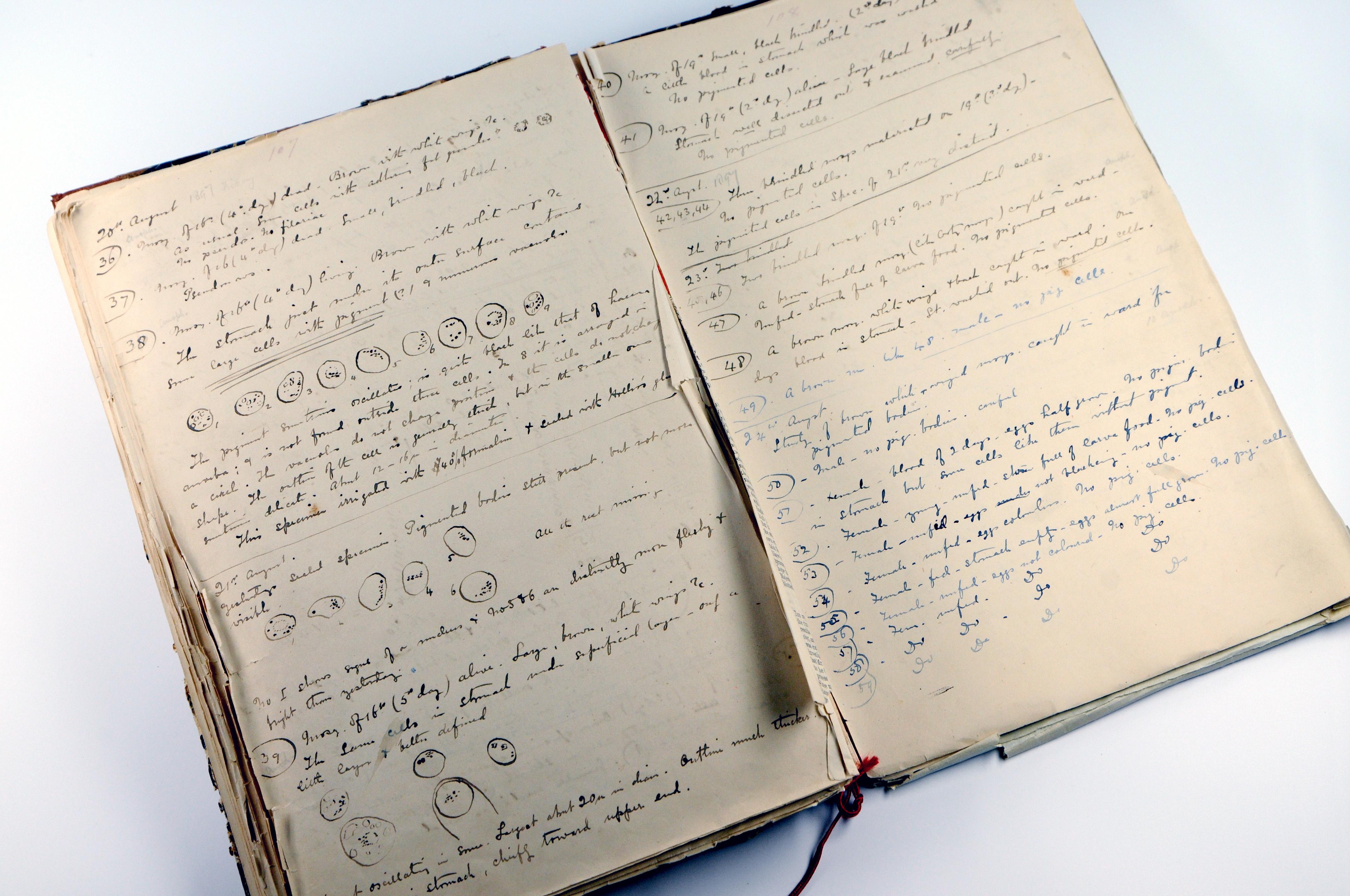 Sir Ronald Ross' notebook