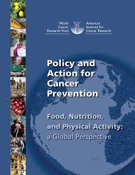 Policy and action for cancer prevention 2009